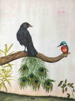 Vain Crow I by Noah Norrid